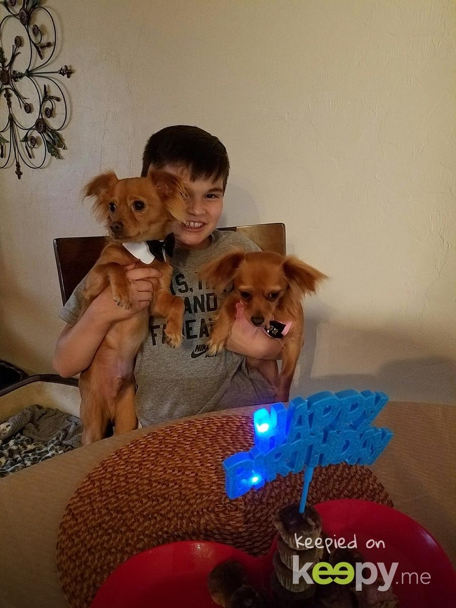 Happy Bday puppies!