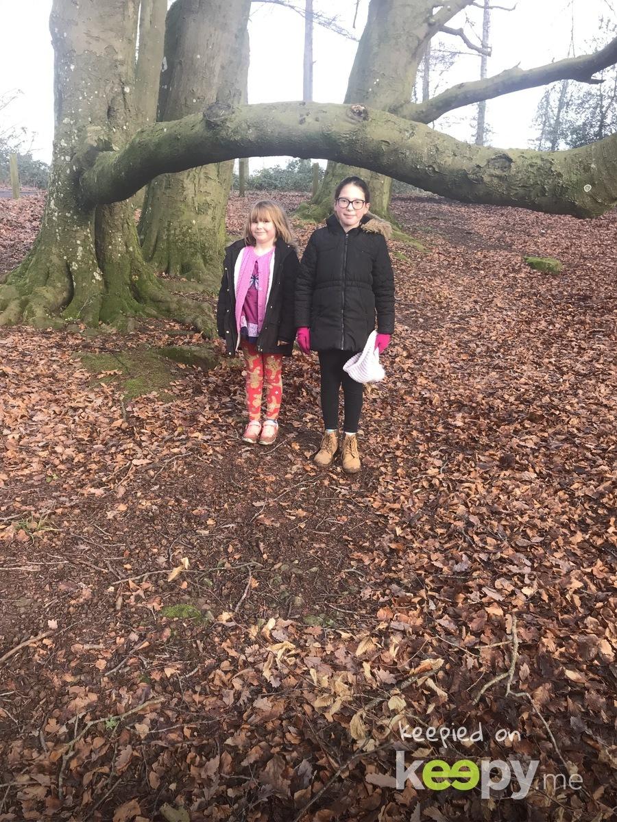 Walk up greyhill - j said look! I can still walk under this tree! » Keepy.me