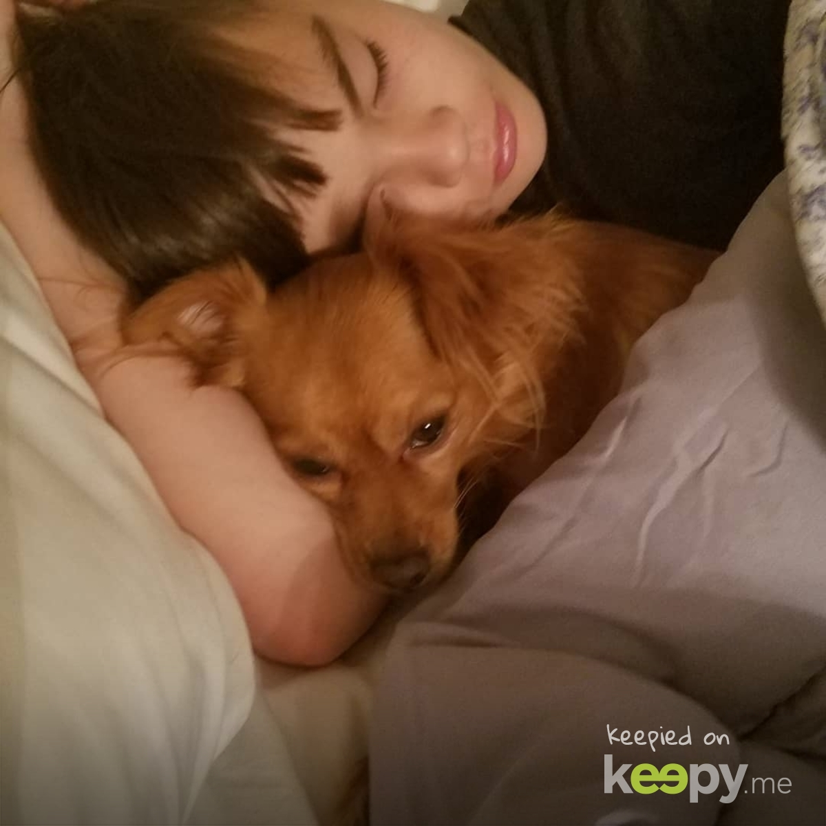 A boy and his dog » Keepy.me